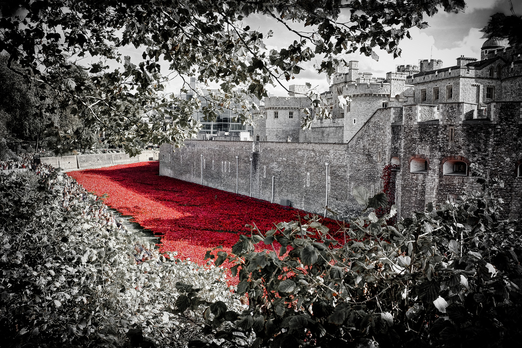 First World War Poppy Memorial at Tower of London